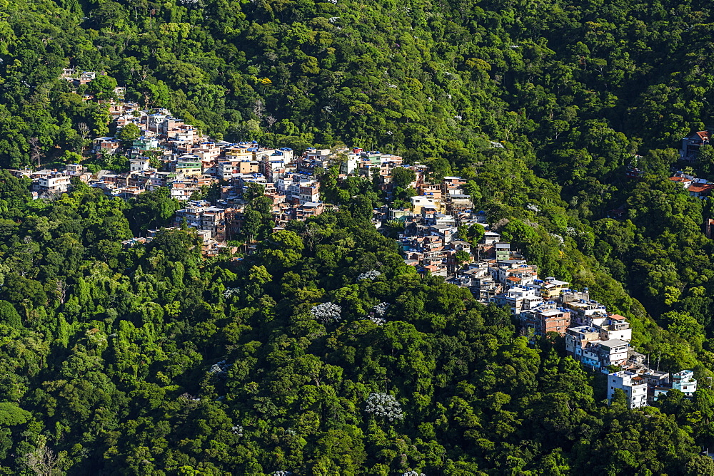 A small portion of Favela da Rocinha cutting through the forest in illegal occupation, Rio de Janeiro, RJ