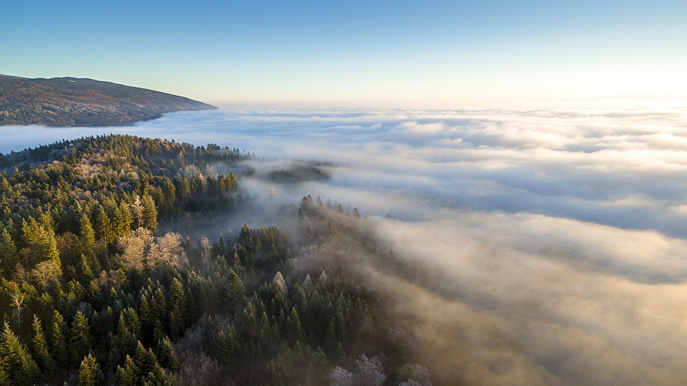 beautiful sunrise on a sea of fog and the mountains covered with forests of Spruce in the Vaud Canton, Switzerland