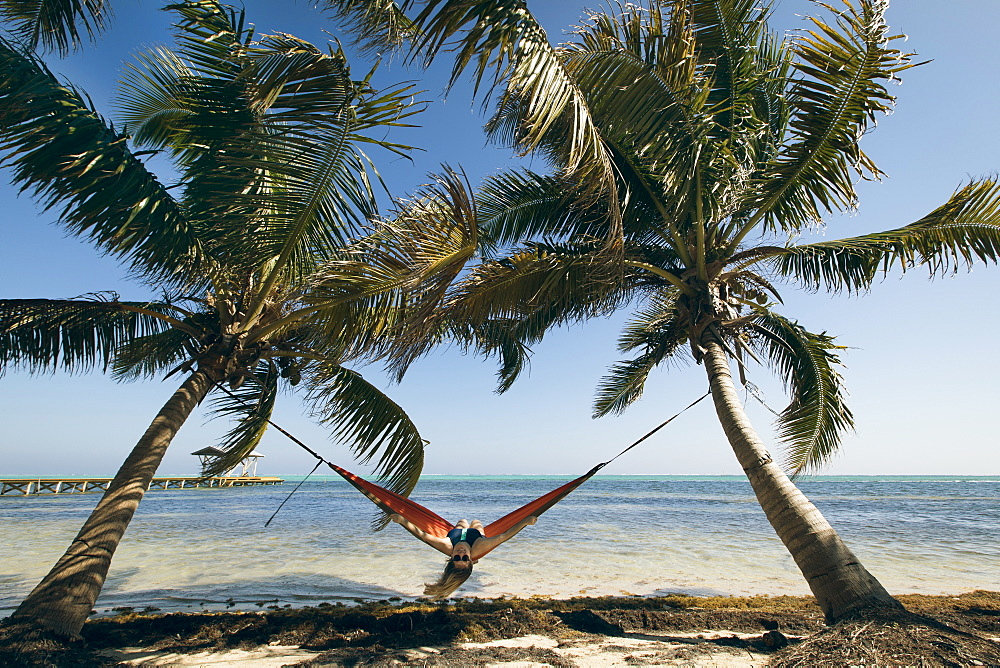 A Young Woman in a hammock is framed by two palm trees