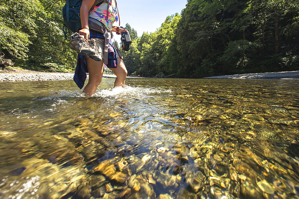 A female hiker holds her shoes and camera as she walks through a river.