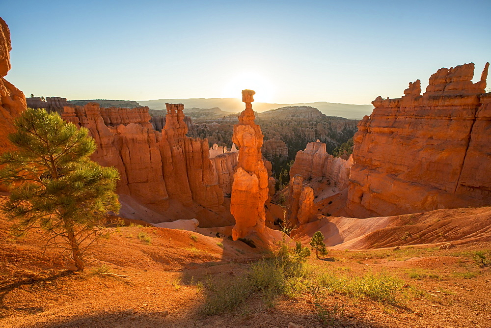 Thor's Hammer in Bryce Canyon National Park at sunrise.