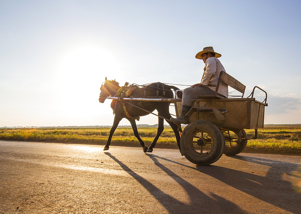 A Man on a Horse-drawn cart passes by in the Cienfuegos region countryside