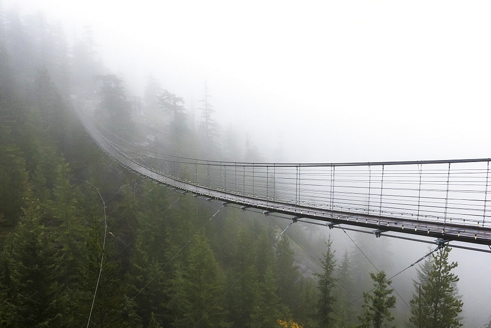 A Misty suspension bridge, Squamish, British Columbia. - 857-94705