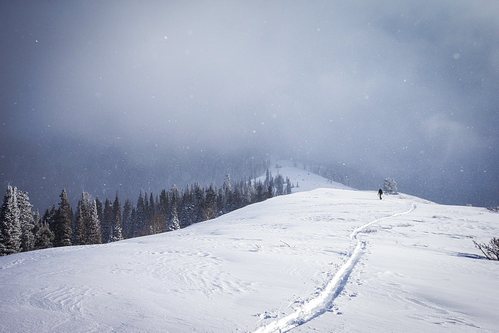 A man ski touring in the Wasatch Backcountry.