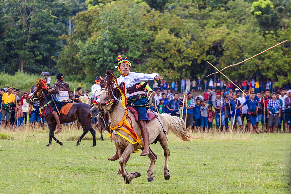Men riding horses and throwing spear at Pasola Festival, Sumba island, Indonesia