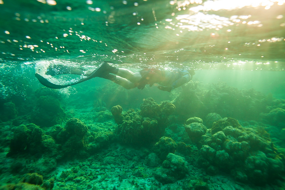 Bruce M. snorkels at the surface of the water off Roatan Island, Honduras.