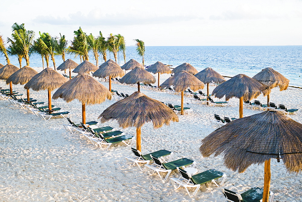 Tropical beach with palm trees, thatched umbrellas and lounge chairs, Cancun, Mexico