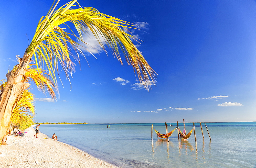 Tourists sunbathing on beach of Holbox next to some hammocks, Holbox Island, Cancun, Yucatan, Mexico