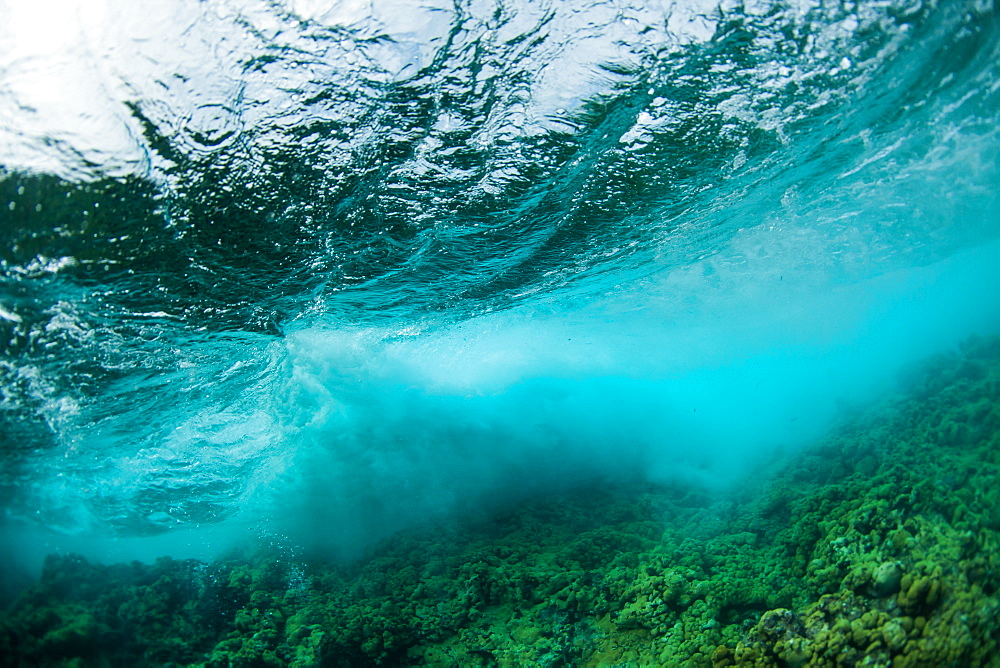 Underwater view of wave breaking over Caribbean Reef, Atlantic Ocean, Belize
