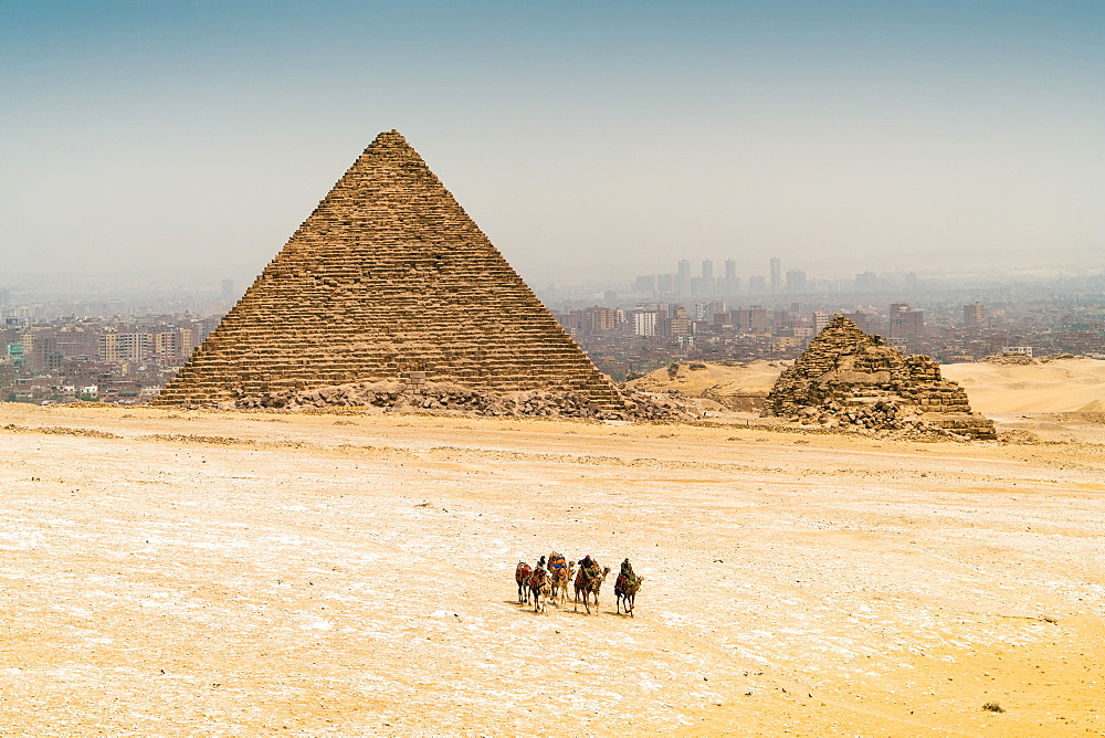 Pyramids of Giza with camels and desert in foreground,  Cairo, Egypt