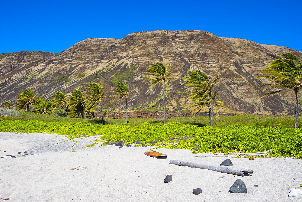 Incredible views from the hard to reach beach at Halape along the Puna Coast Trail in Hawaii Volcanoes National Park on the Big Island. This beach is a turtle nesting sanctuary protected federally by the United States.