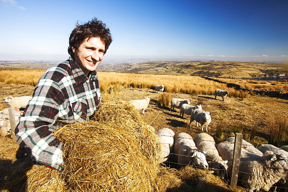 Walter Clay a farmer feeding his sheep on Ovenden moor near Keighley, West Yorkshire, UK.