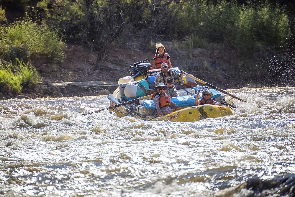 Men and women rafting on rushing Green River in Desolation Canyon, Utah, USA