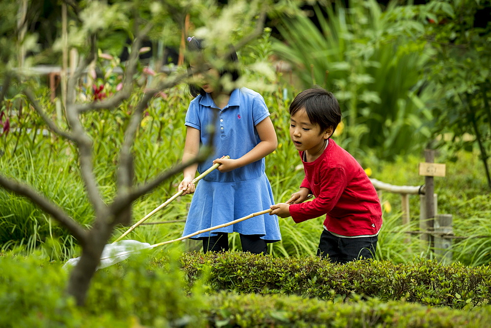 Boy and girl playing in park and catching butterflies with butterfly nets, Tokyo, Tokyo, Japan