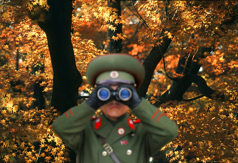 North Korean soldier looking through binoculars against autumn tree, Kumgang San, Kumgang, North Korea