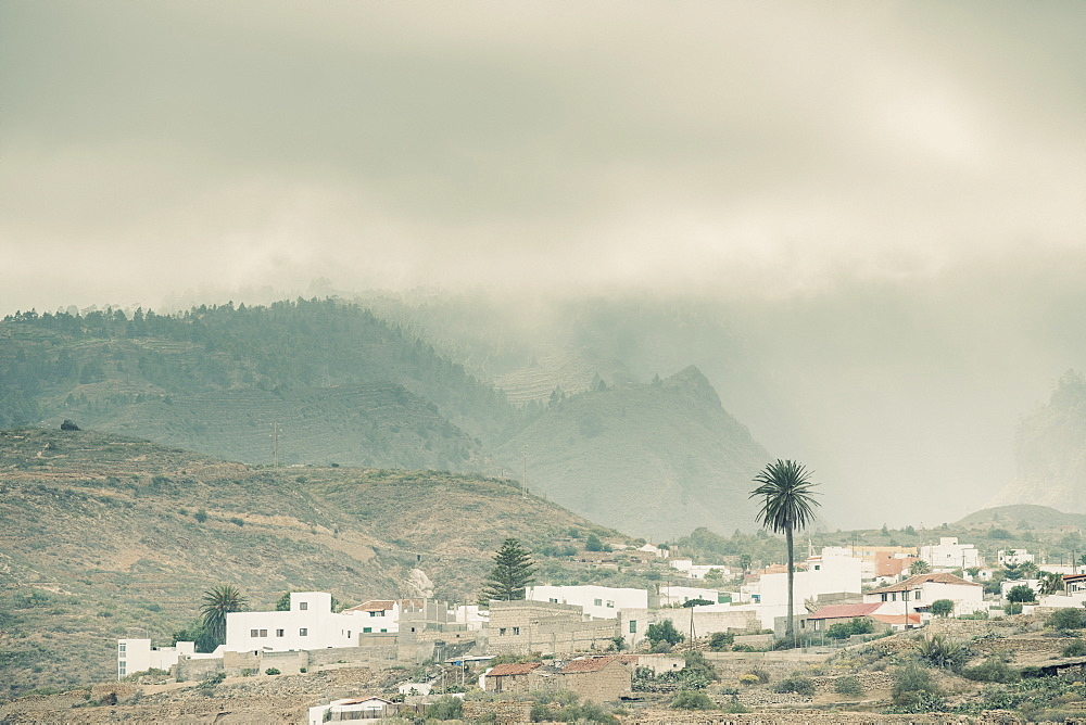Moody picture of palm trees and small town in front of mountains in clouds, Tenerife, Canary Islands, Spain