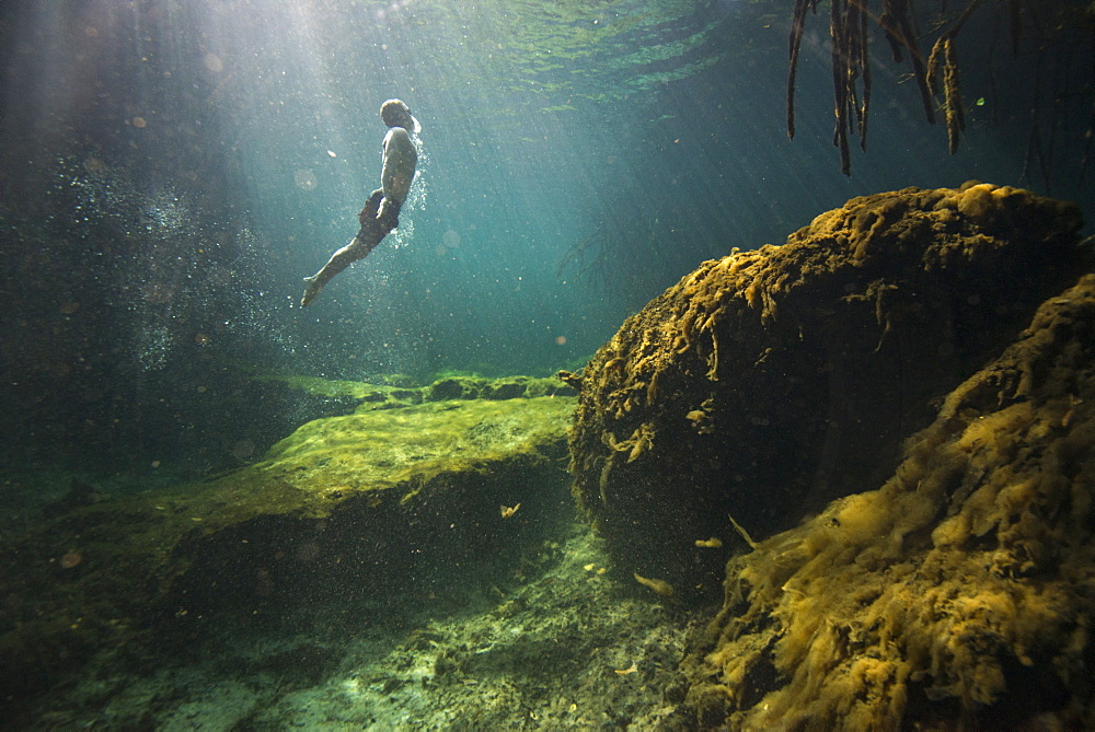Side view of single man?freediving?in?cenote?in Riviera Maya,?Quintana?Roo, Mexico