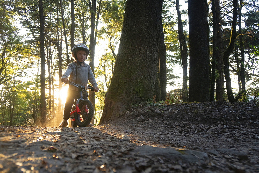 Front view of toddler riding bicycle in forest, El Chico National Park, Hidalgo, Mexico