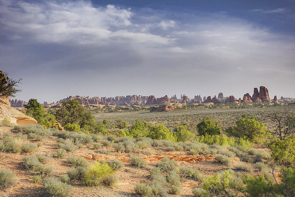 Scenic landscape of rock formations in desert at Needles District in Canyonlands National Park, Utah, USA