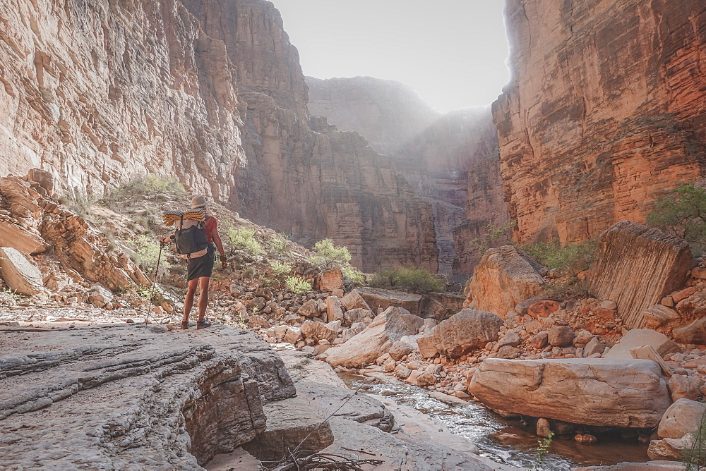 Rear view shot of female hiker standing in Grand Canyon, Arizona, USA