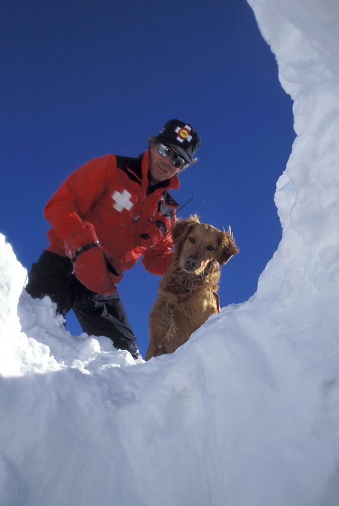 An avalanche rescue dog, trained to sniff out victims buried in avalanches, finds a buried practice victim buried in the snow on the slopes of Snowmass Ski Resort, near Aspen, Colorado