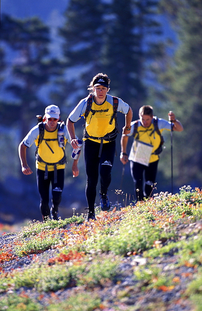 Members of Team Montrail (Novak Thompson ,Patrick Harper, Rebecca Rusch) train for the next adventure race of the season. The team spends much time hiking and running. In the photo the team runs up hill, through flowers, near Lake Tahoe. Hope Valley, California