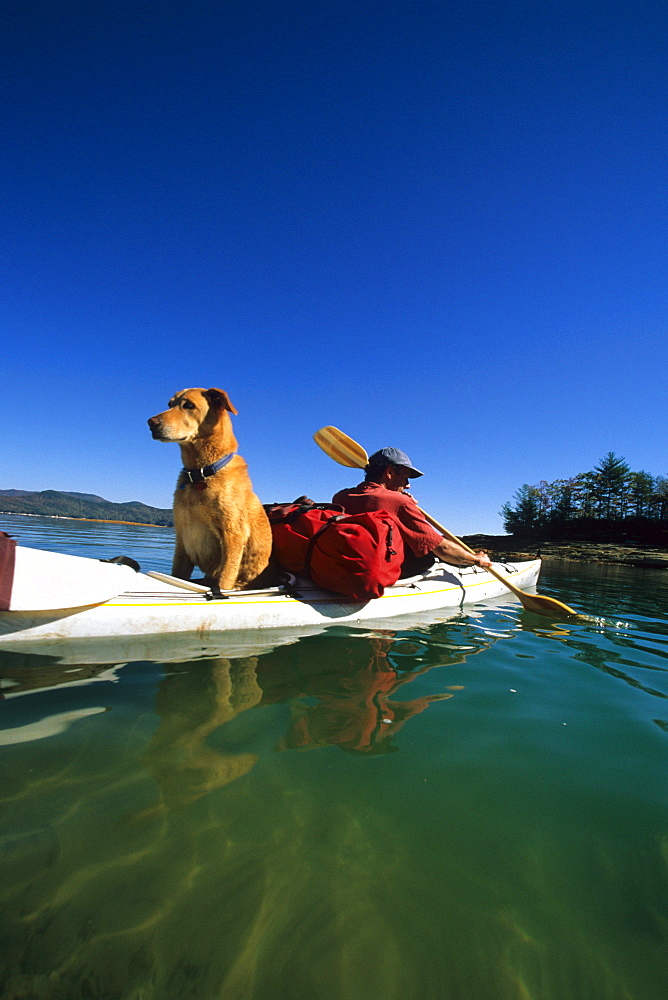 Dean Ganslein along with his dog, Blue, paddles a sea kayak on the clear waters of Lake Jocassee, SC.