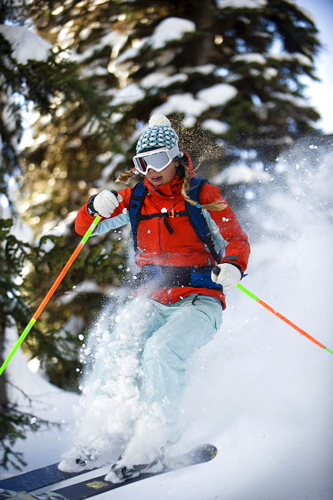 A woman backcountry skier catches air in the trees of the Selkirk Mountains, Canada.