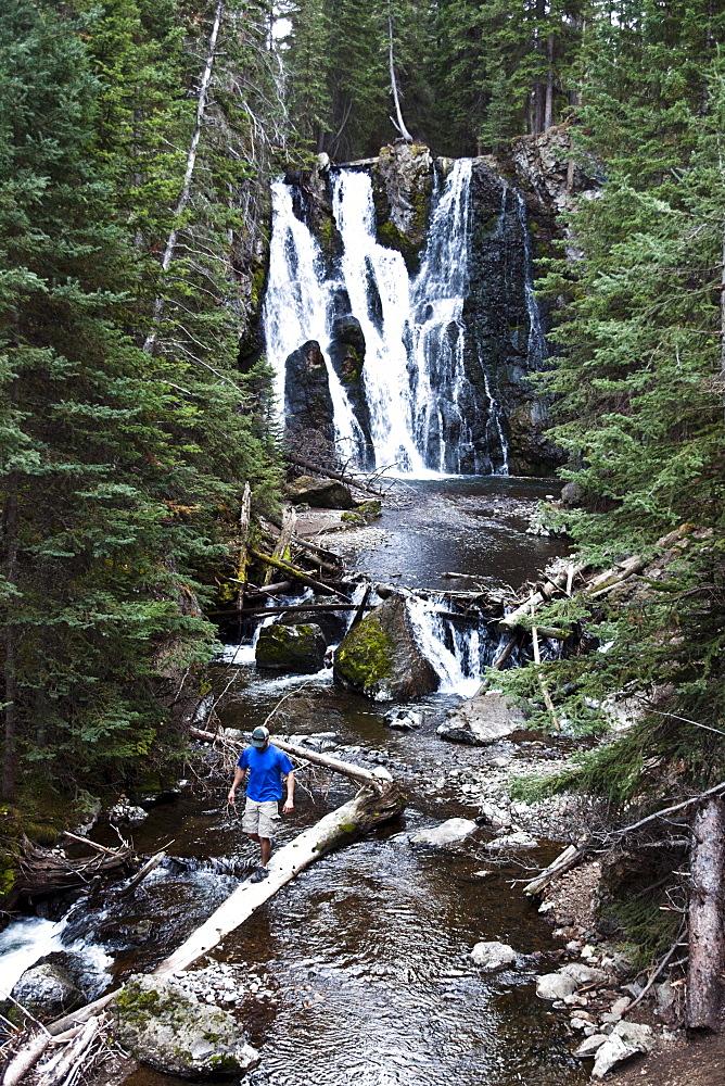 A athletic man hiking walks across a fallen log next to a waterfall near Bozeman, Montana.