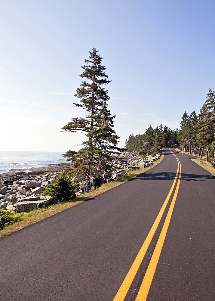 A road winds along the coast on the Schoodic Peninsula section of Maine's Acadia National Park.