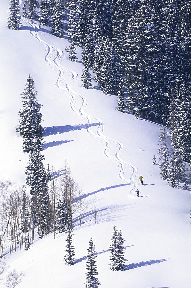 Suzanne Montgomery and Bill Ericksn skiing at The Canyons, Park City, Utah, United States of America