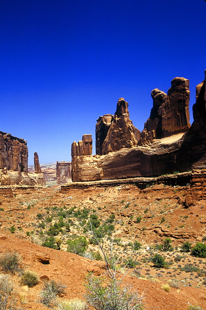 A portion of the Needles, Canyonland National Park.