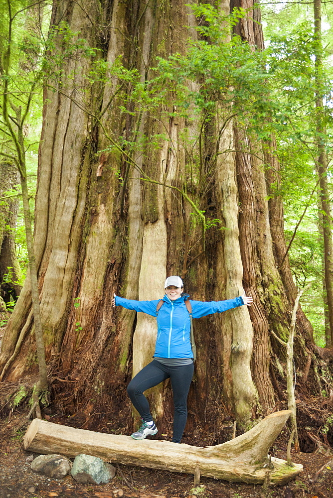 A young woman stands in front of a giant Cedar Tree along the Wild Pacific Trail, Vancouver Island, British Columbia