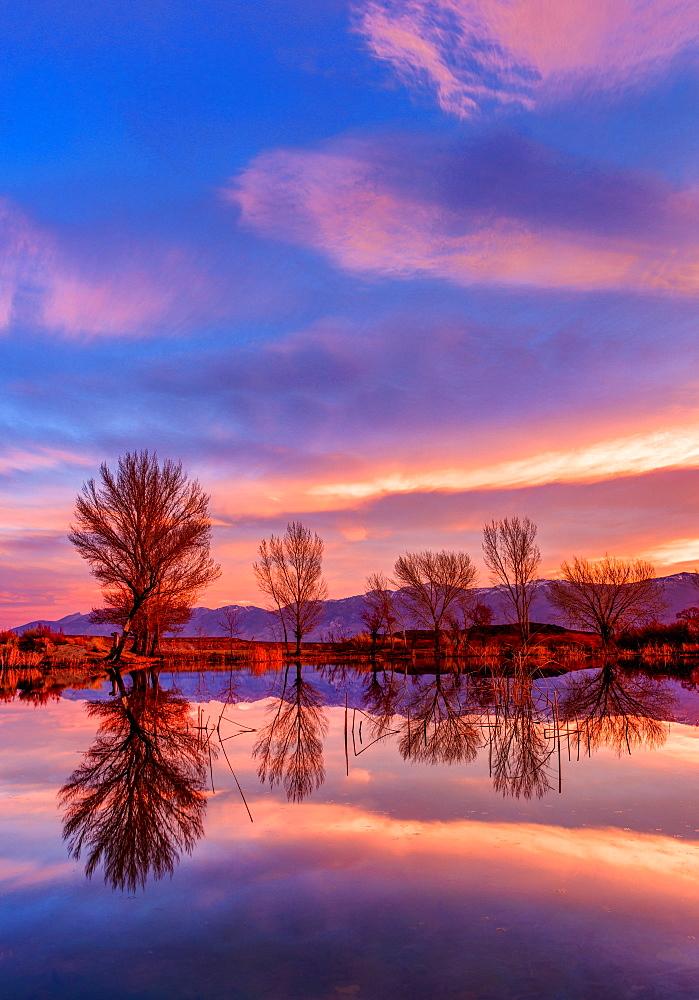 Mill Pond sunset, Bishop California