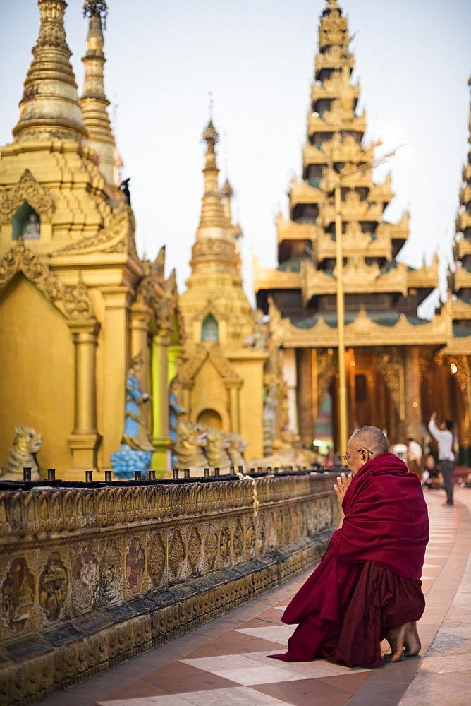 A Buddhist monk prays at the Shwedagon pagoda, Yangon, Myanmar.