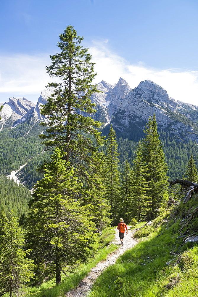 Man Hiking On A Trail After Climbing The Via Ferrata Ivano Dibona