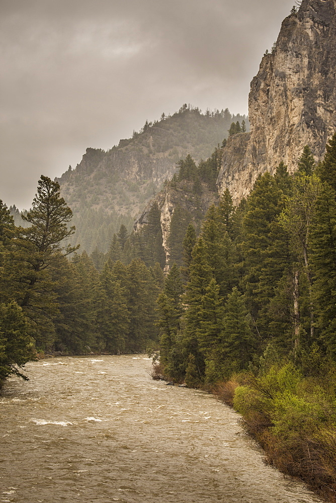 View Of Gallatin River In Montana, Use