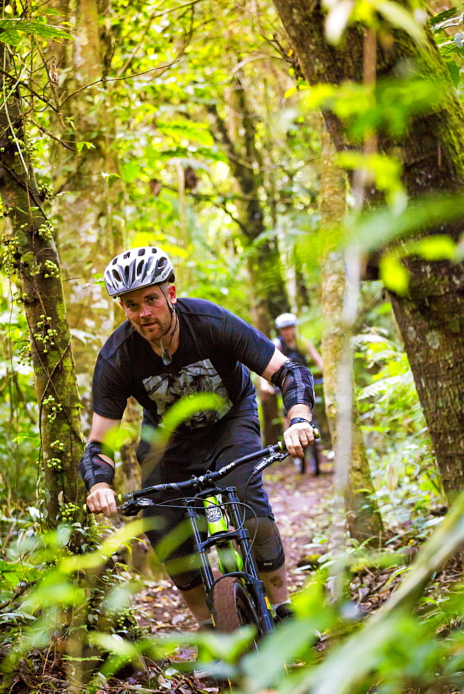 Mountain Biker Riding In Forest Trail Of Bali, Indonesia