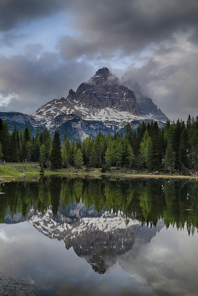 Reflection Of Tre Cime Di Lavaredo Peaks In A Small Pond Near Misurina, Dolomites, Italy