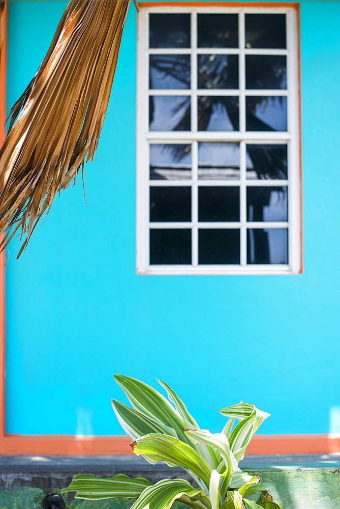 Window in the colorful wall of a tropical store