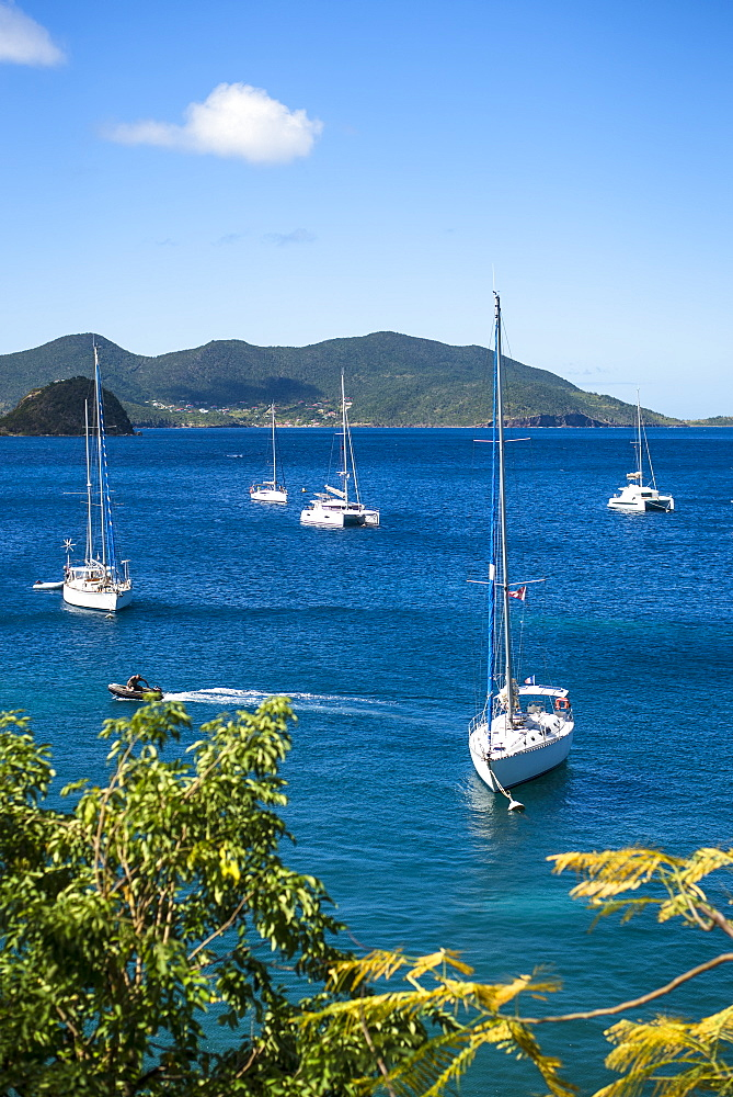 View of sailboats in sea, Bourg de Saintes, Isles des Saintes, Guadeloupe