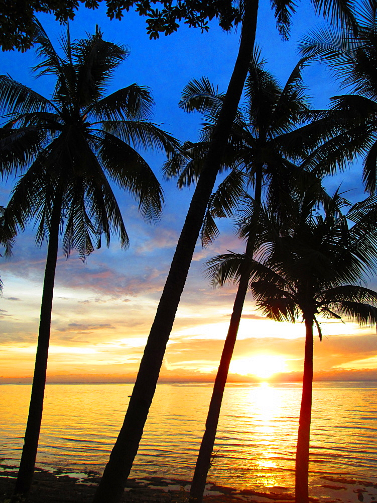 Scenic view with silhouettes of palm trees on beach at sunset, Boracay, Aklan, Philippines
