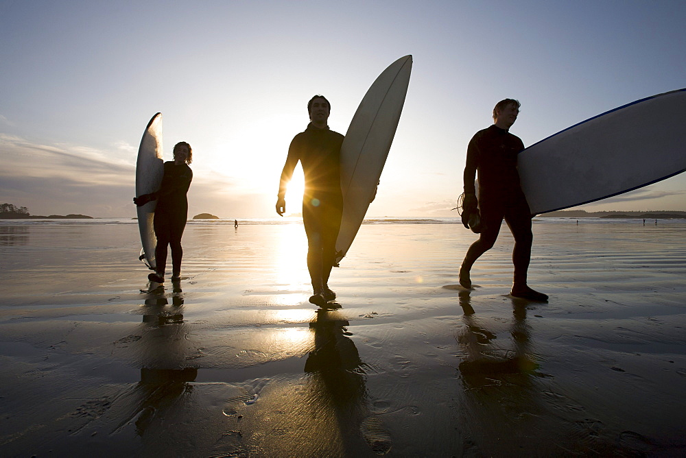 Silhouette Of Three Surfers Carrying Surfboards; Chesterman Beach Tofino Vancouver Island British Columbia Canada