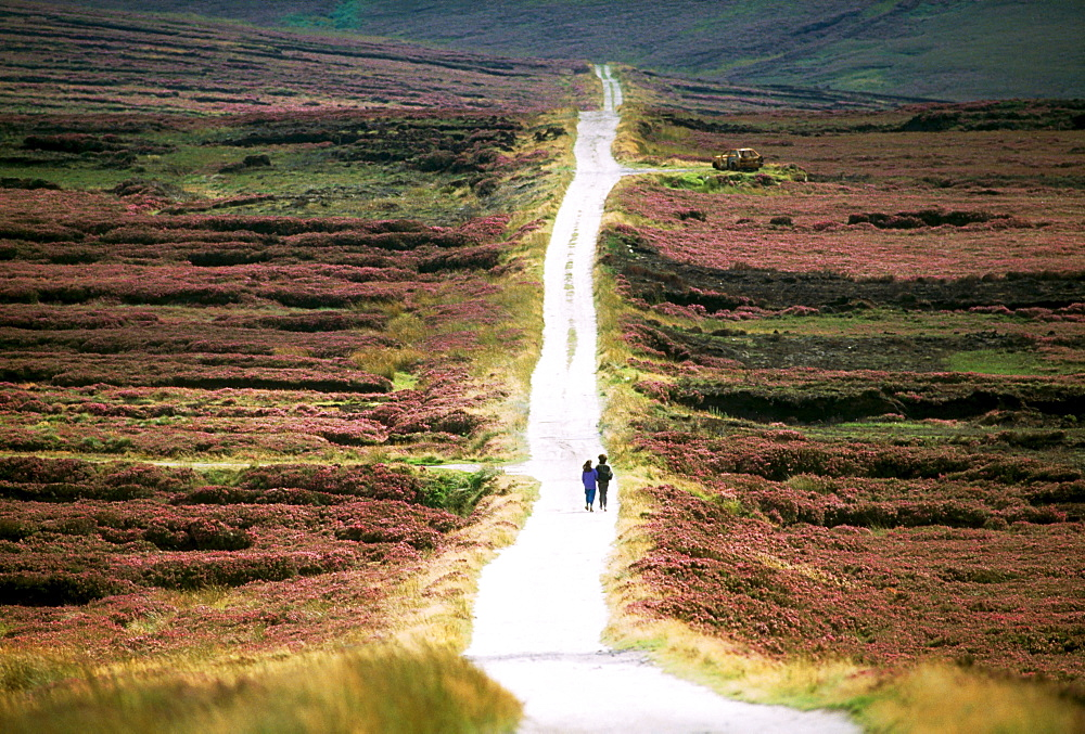 Wicklow Mountains, County Wicklow, Ireland, People Walking