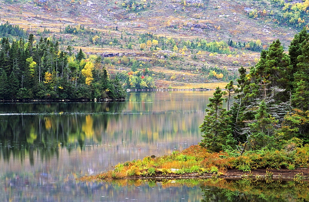Lake And Trees In Fall Near Swift Current, Burin Peninsula, Newfoundland, Canada