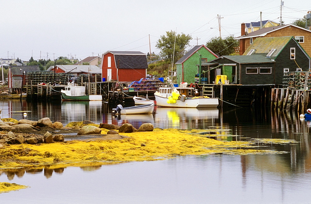 Fishing Village Of West Dover, Newfoundland, Canada