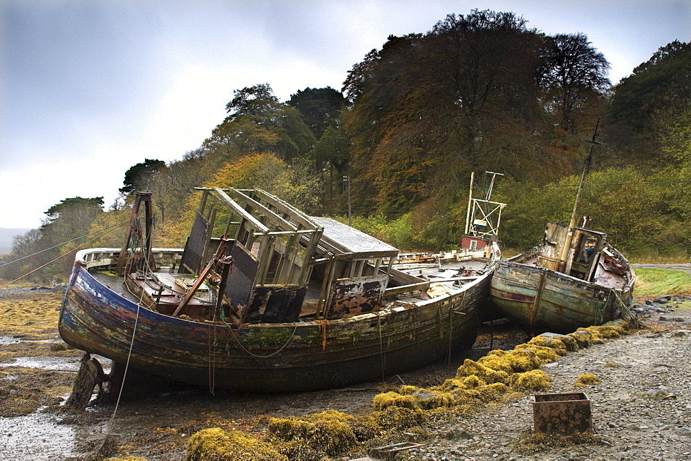 Two Old And Abandoned Boats On The Shore Of Isle Of Mull, Scotland