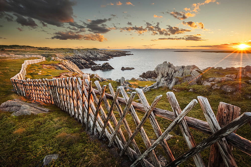 A rocky Atlantic shoreline with a wooden fence in a criss-cross pattern lines the shore as the golden sun rises in the distance; Newfoundland, Canada