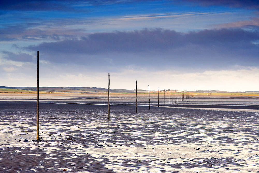Poles In Water, Near Holy Island, Bewick, Northumberland, England