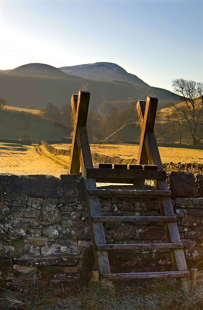 Ladder Over Stone Wall, Lake District, Cumbria, England, United Kingdom